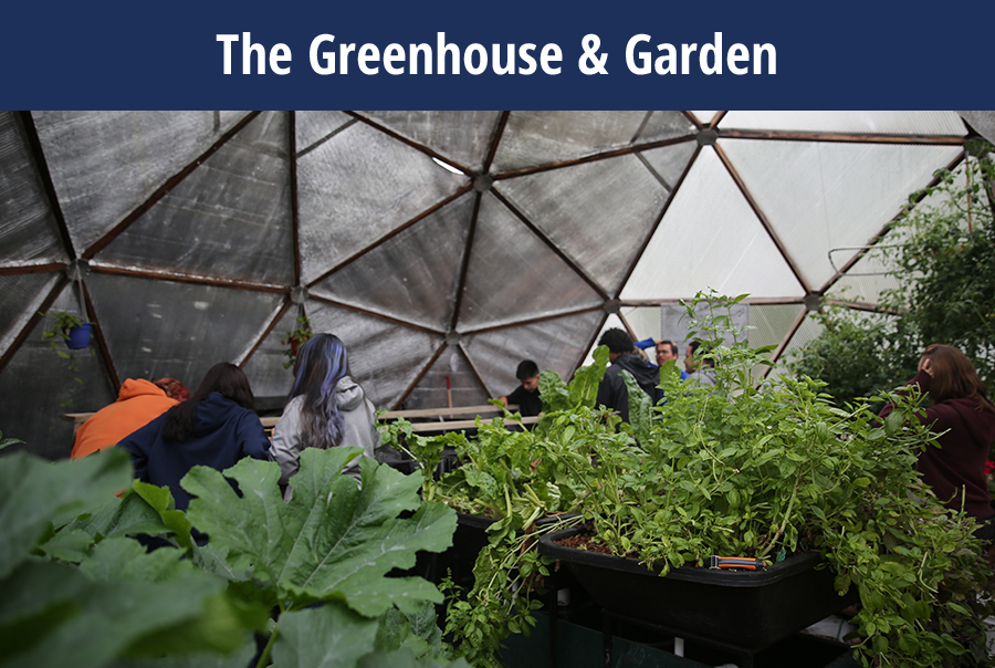 The Greenhouse & Garden